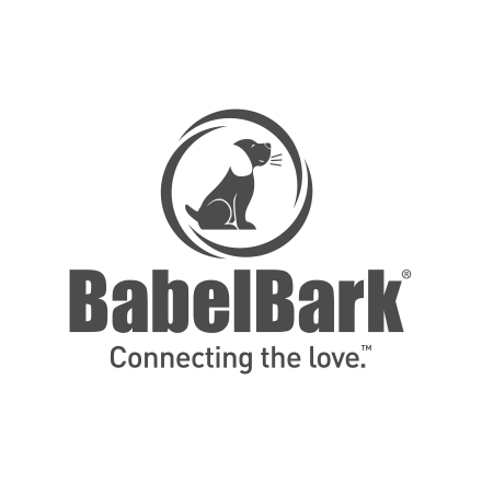 babelbark veterinary explainer video